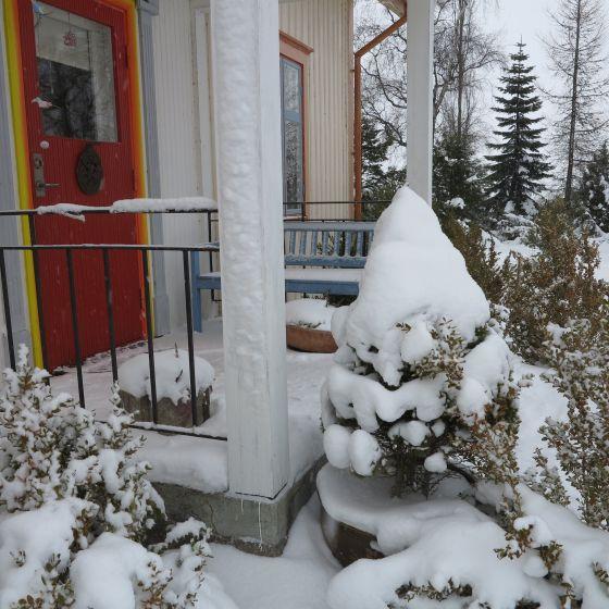 snötrapp
