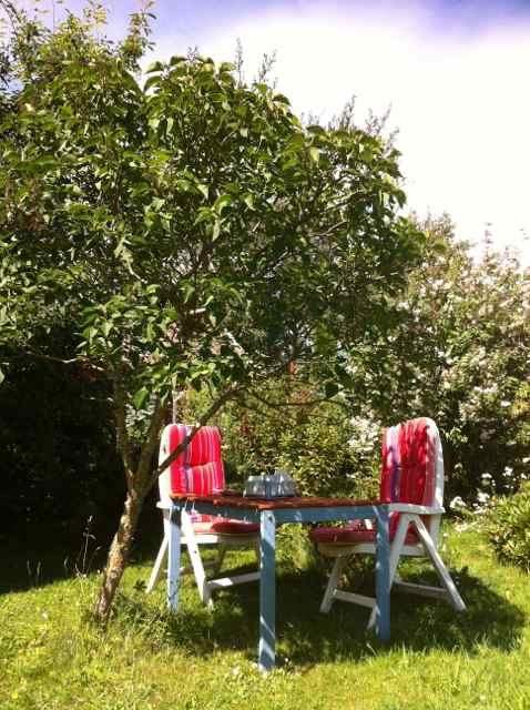 sommar trädgård