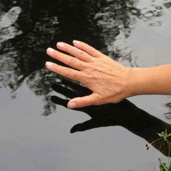 vattenspegel, hand