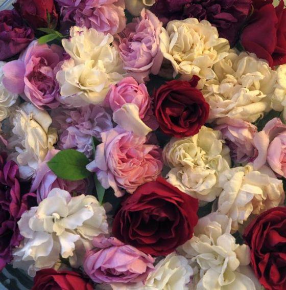 många rosor