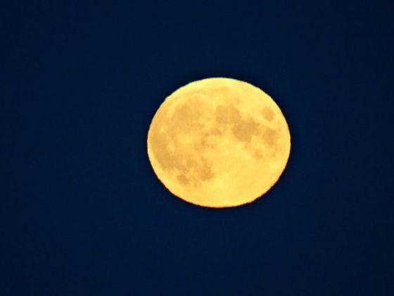 Måne, gul