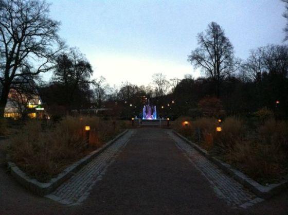 Trädgårdförenngen Linköping