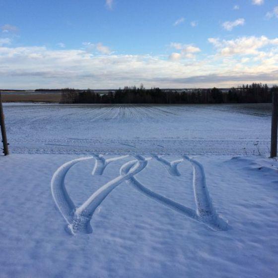 snöhjärtan