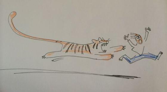 jagad av en tiger
