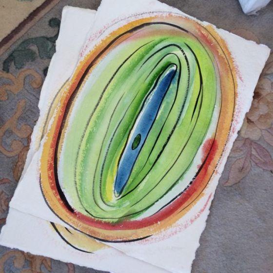 Akvarellmutta