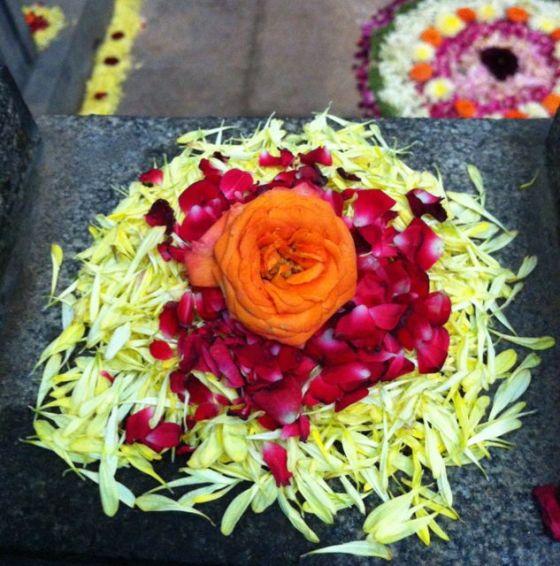 Blommor från Thiru