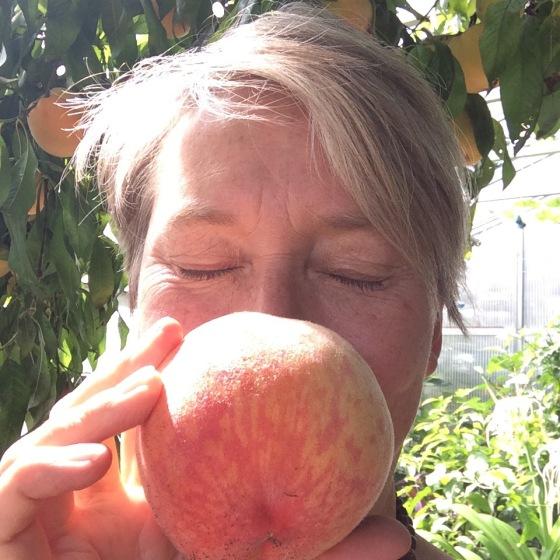 stor persika