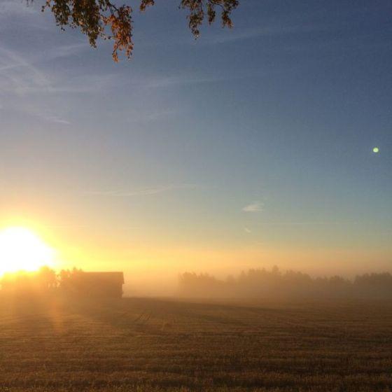 solmorgon