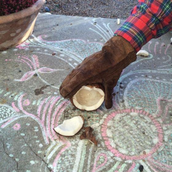 öppnad kokos