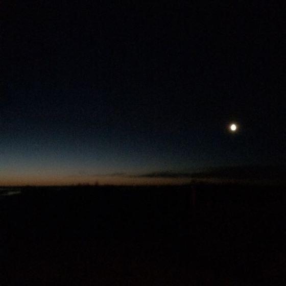 tidig gryning