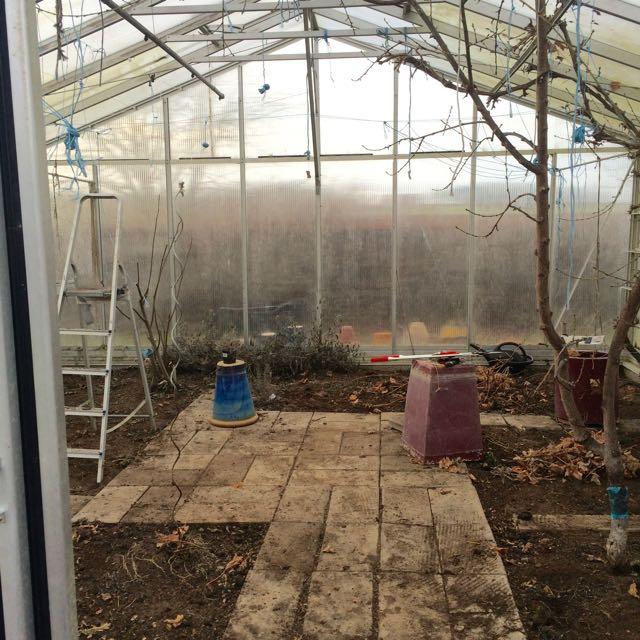 tomt växthus