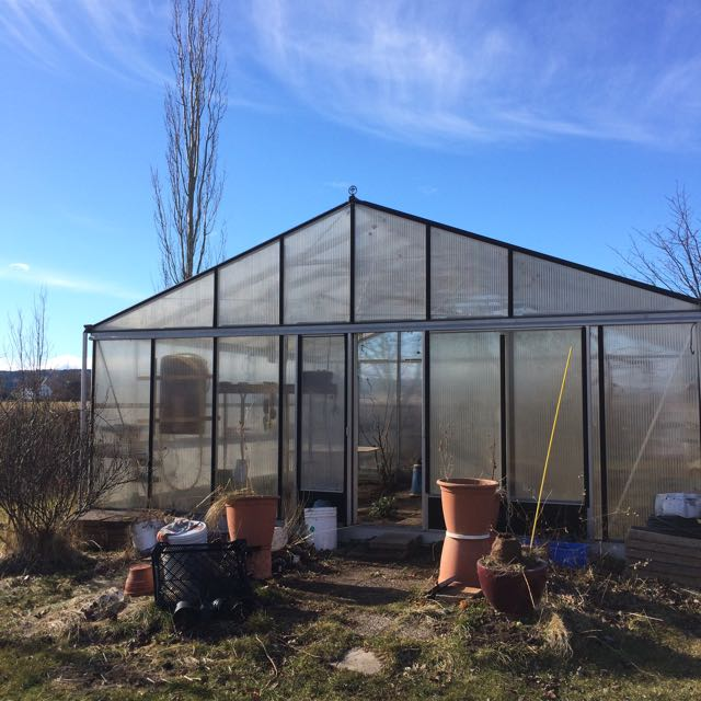 växthus, vår