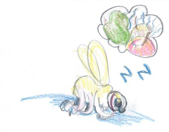 fruktfluga som sover