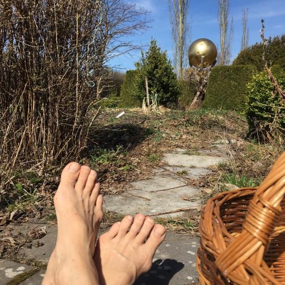 GuldBollen o trädgårdsvår
