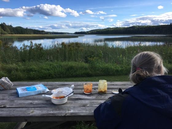 Resenär vid en sjö