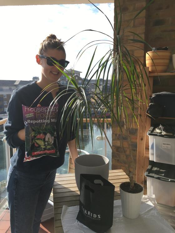 Ella, balkong, krukväxt