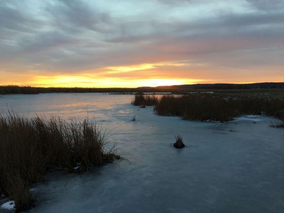 solnedgång, tåkern