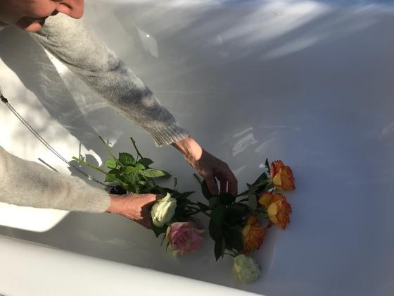 Rosor i badet