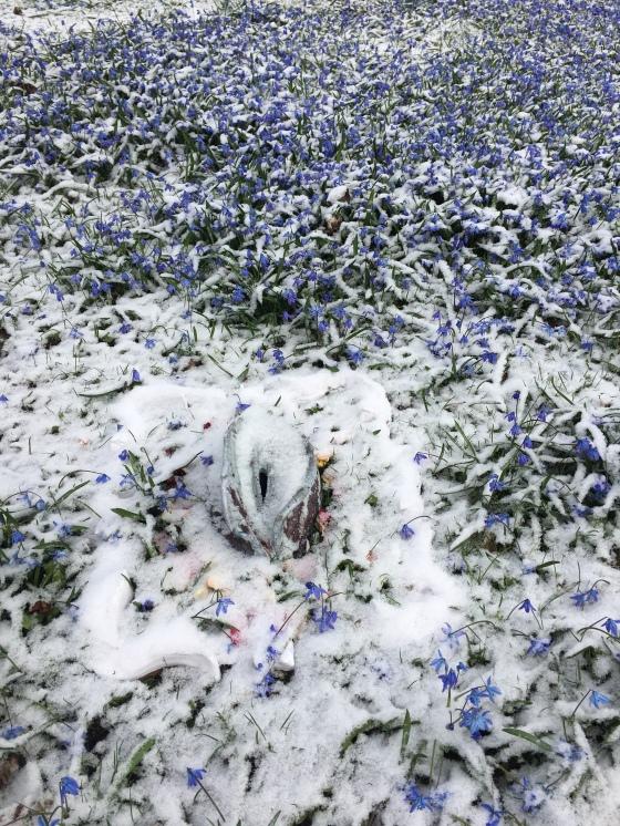 Snö och vagina