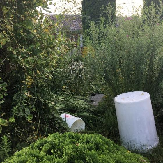 trädgårdskaos