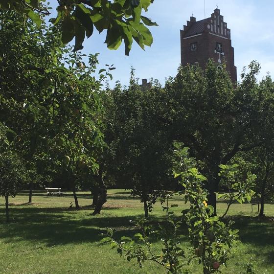 Klosterträdgården, Vadstena
