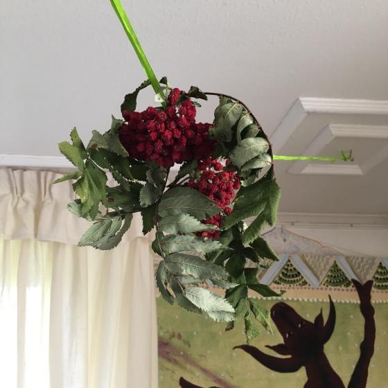 Rönnbär på tork