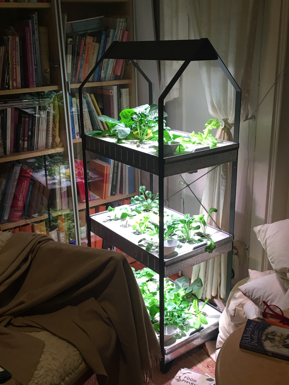 vår odling, i biblioteket