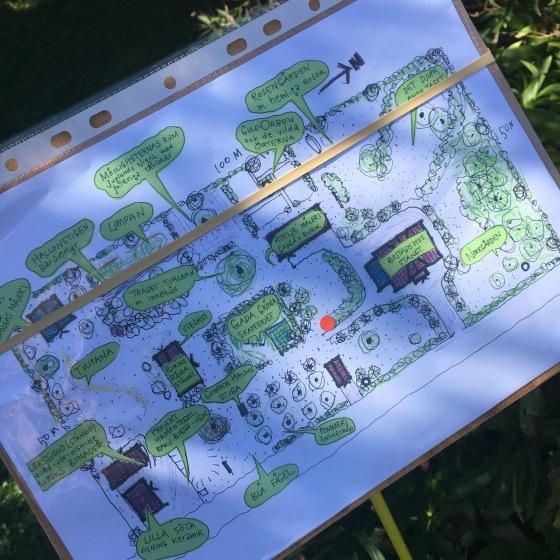 karta över vår trädgård